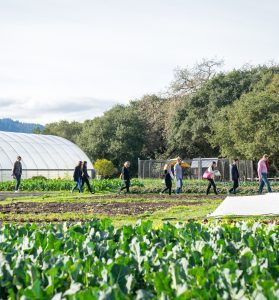 Event attendees walking to a greenhouse at a farm during the daytime.