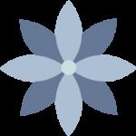Blue star shape